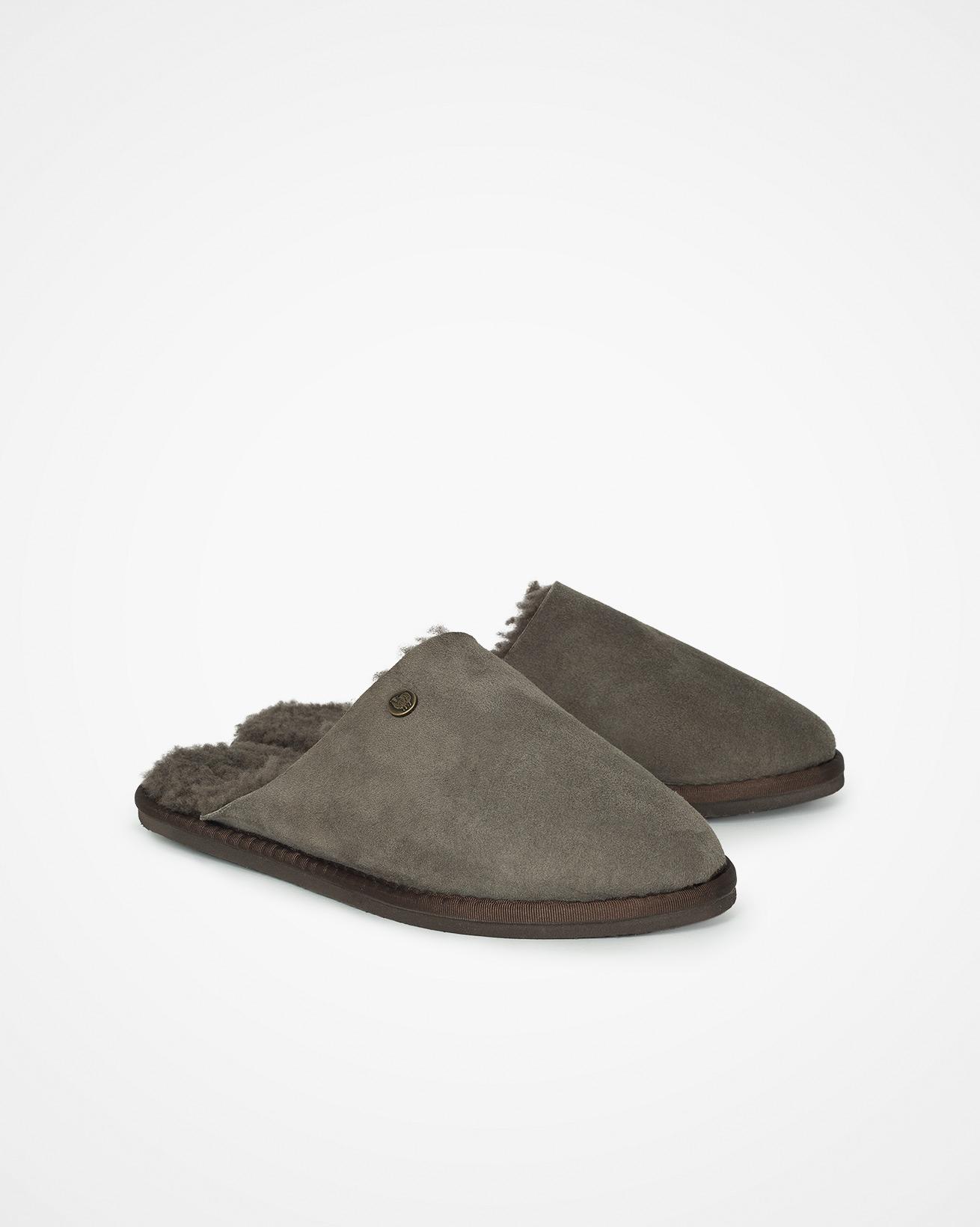 6615_maybe_mule-slipper_vole_pair.jpg
