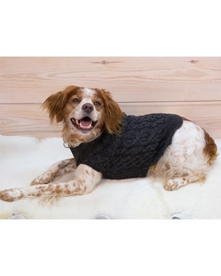 7440_dog jumper_alfie_lay down.jpg